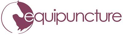 Equipuncture